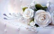 «Свадебный салон-2013»: познакомьтесь с вашими ангелами