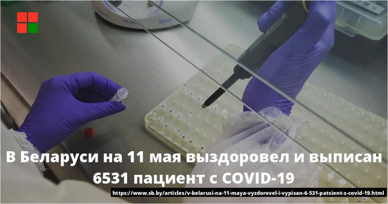 В Беларуси на 11 мая выздоровел и выписан 6531 пациент с COVID-19 1