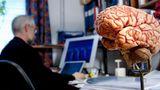 Назван возраст, когда мозг человека достигает пика своих возможностей 1