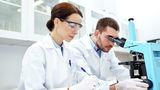 Ученые создали новый материал для восстановления костной ткани 1