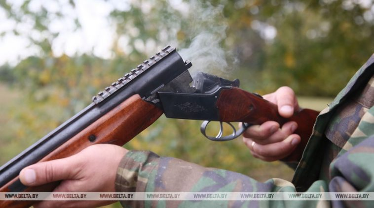 В МВД рассказали об изменениях процедуры приобретения охотничьего оружия 1