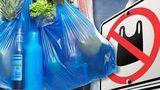 В Германии одобрили запрет пластиковых пакетов в супермаркетах 1