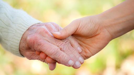 Социальная поддержка пожилых: возможности и перспективы 1
